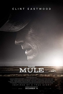 The Mule1